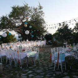 Wedding Planner Destination